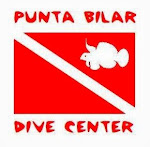 EAZYTRAVELER dives with PUNTA BILAR DIVE CENTER!