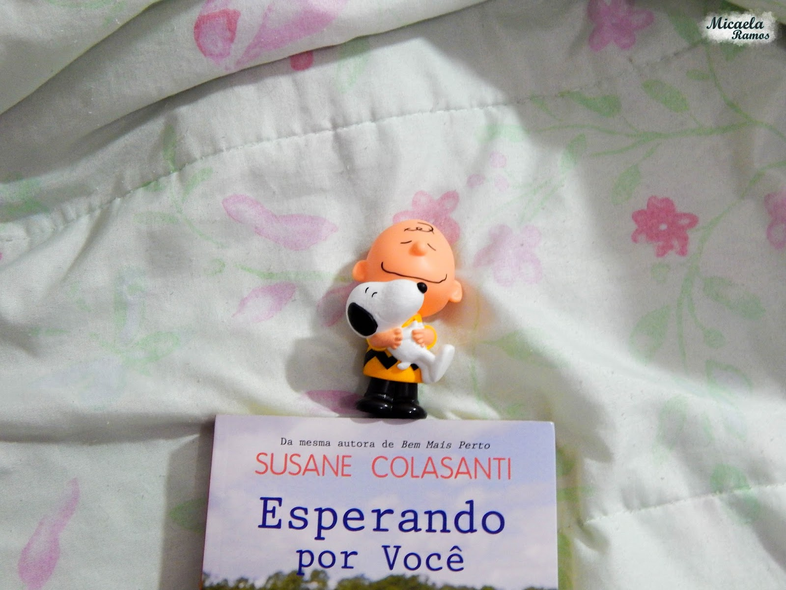 fotografia, photography, livro, book, susane colasanti, esperando por voce, waiting for you, micaela ramos, wanderlust, snoopy, action figure,