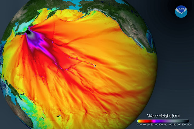 Die japanische TEPCO will das gesamte radioaktiv verseuchte Wasser plus sonstiges Material in den Ozean kippen Tsunamiwaveheight