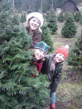 Tree Hunting 2011
