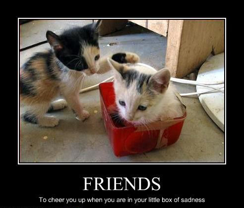 Friends - To Cheer You Up When You Are In Your Little Box Of Sadness