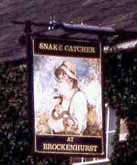 Snake catcher casino