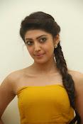 Pranitha latest dazzling pics-thumbnail-19