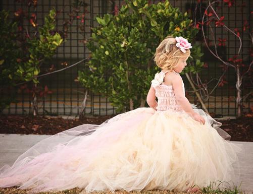 Pink Wedding Dress Dream Meaning : Dream wedding blush pink gown flower girl dress