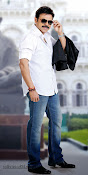 Venkatesh photos from Radha movie-thumbnail-7