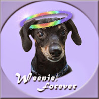 RUN FREE SWEET WEENIE