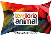 Colunista do Programa Território Animal