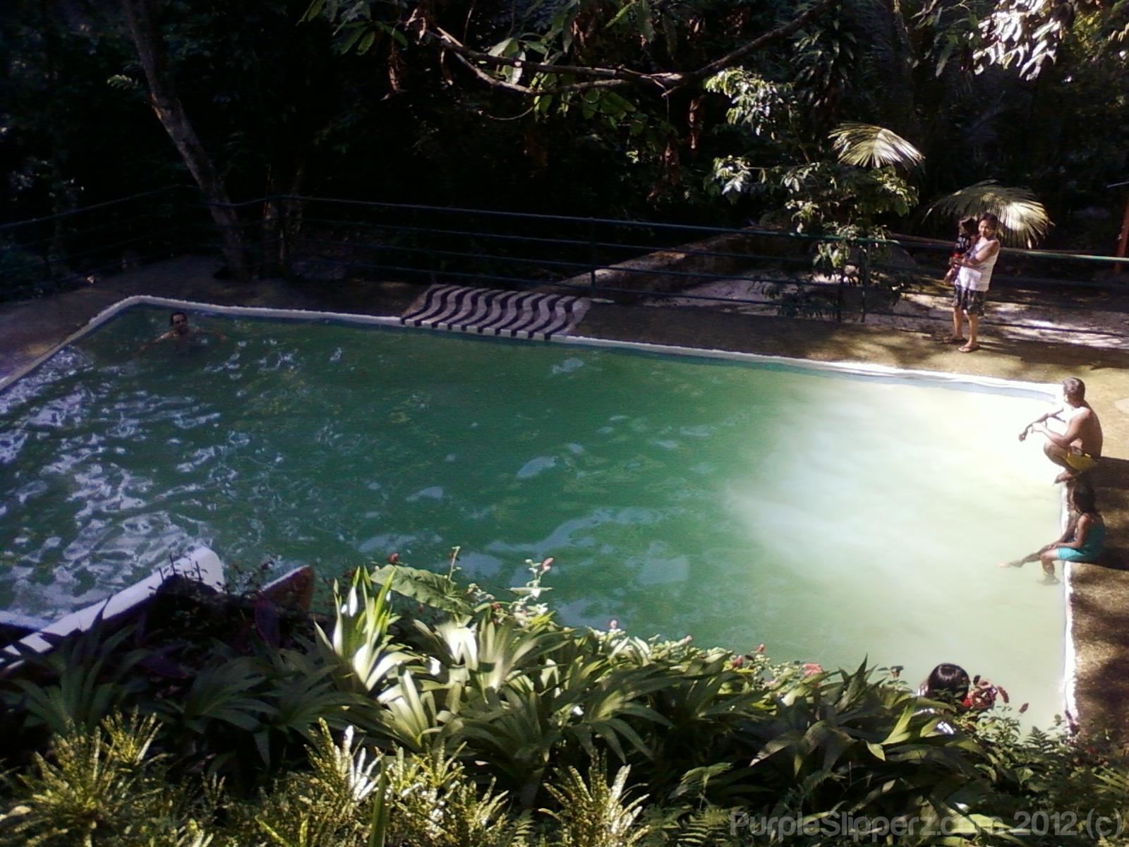 Cebu City Lanipao Rainforest