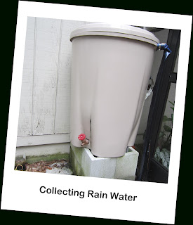 Teaching Children to Be Environmentally Friendly by using rain barrels