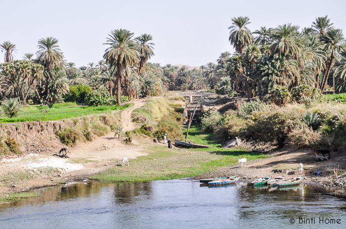 Nile Luxor green - Binti Home
