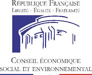 conseil economique social environnemental cese microfinance muhammad yunus 2011