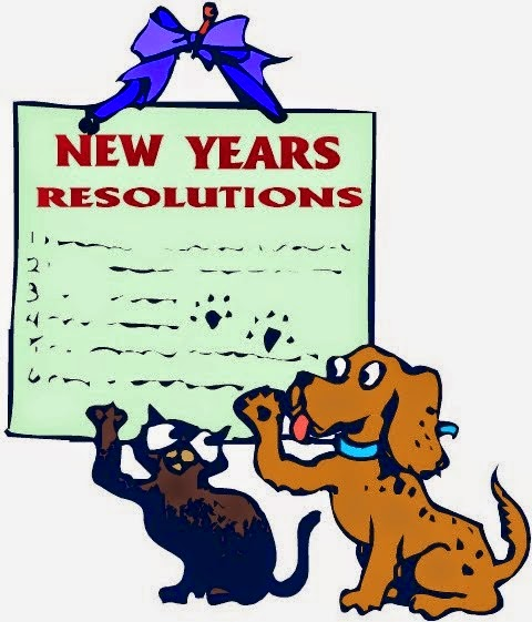 New Year Resolution 2015