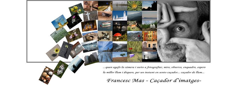 Francesc Mas  Photographer