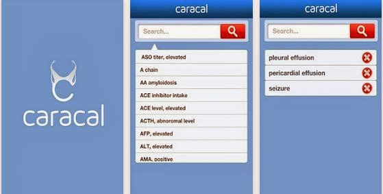 Caracal Diagnosis 1.0