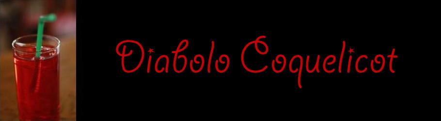 Diabolo coquelicot sac de piscine - Diabolo piscine ...