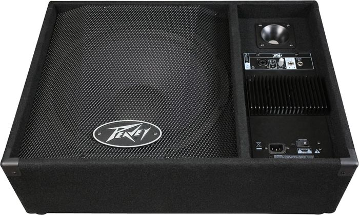 Peavey PV 15PM Powered Floor Monitor Review
