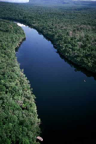Not only that, but Amazon River said to be filled by terrible ...