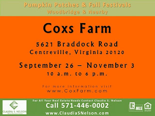 Pumpkin Patches near Woodbridge Virginia 2015, Cox Farms Centreville Va