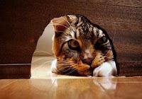 Fabula empresarial: El Gato y los Ratones