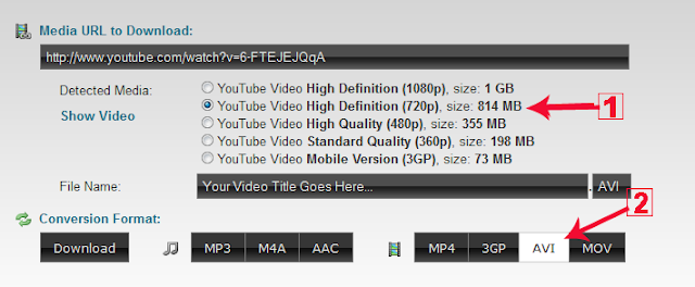 Download-Specific-Part-of-Daily-Motion-Videos