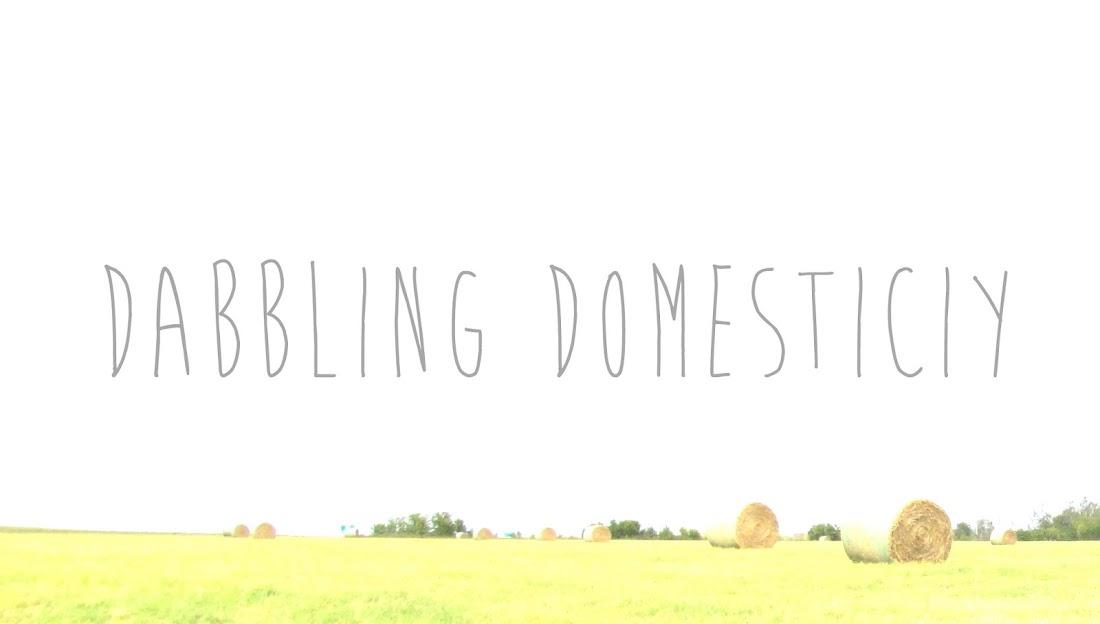 Dabbling Domesticity