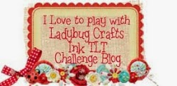 Ladybug Crafts Challenges