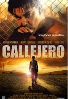 Callejero (2015) online y gratis