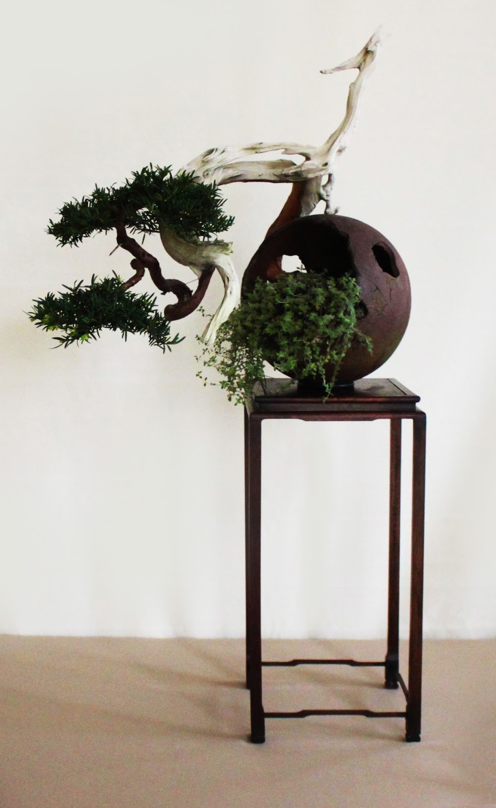 Yamadori Art UK Bonsai In Wales 2012