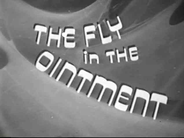 fly in the ointment Fly in the ointment définition, signification, qu'est ce que fly in the ointment: a single thing or person that is spoiling a situation that could have been very positive.