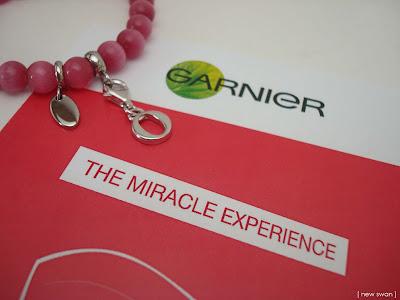 The Miracle Experience - Die Schatzsuche beginnt!