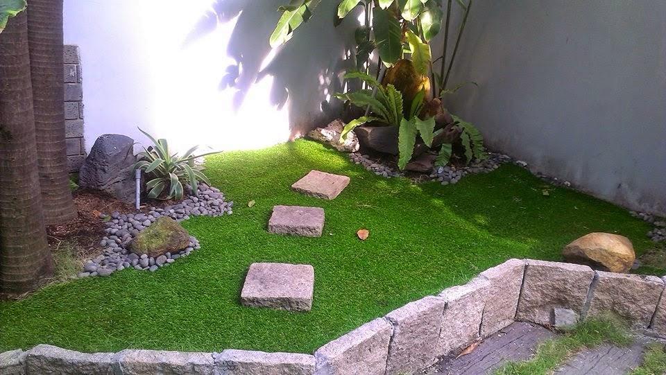 cỏ sân vườn tnxsvx35