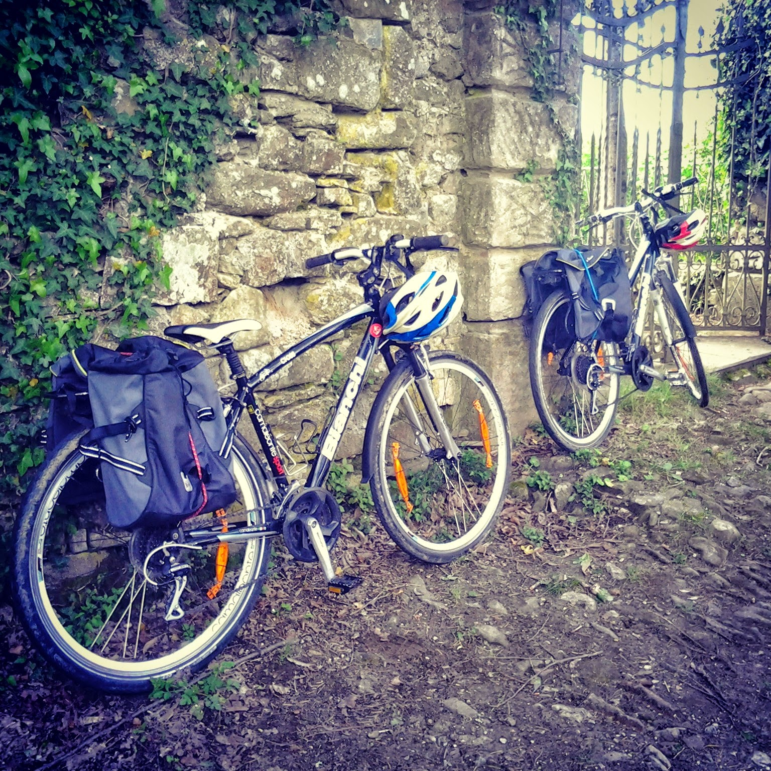 bike rental greve in chianti