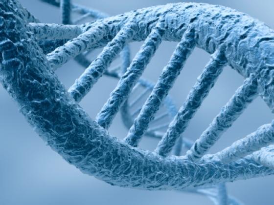 25 investigaciones muy interesantes del 2012
