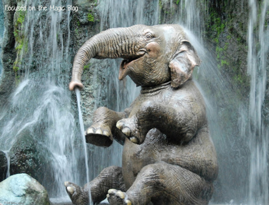 Walt disney World, Jungle Cruise Elephant, Focused on the Magic