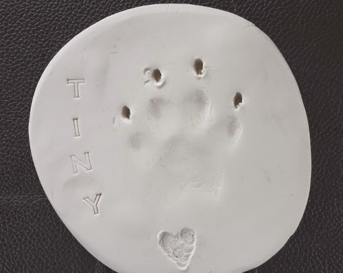 Eclectic Red Barn: Tiny's paw print
