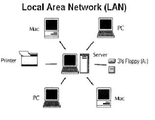 Jenis jaringan LAN