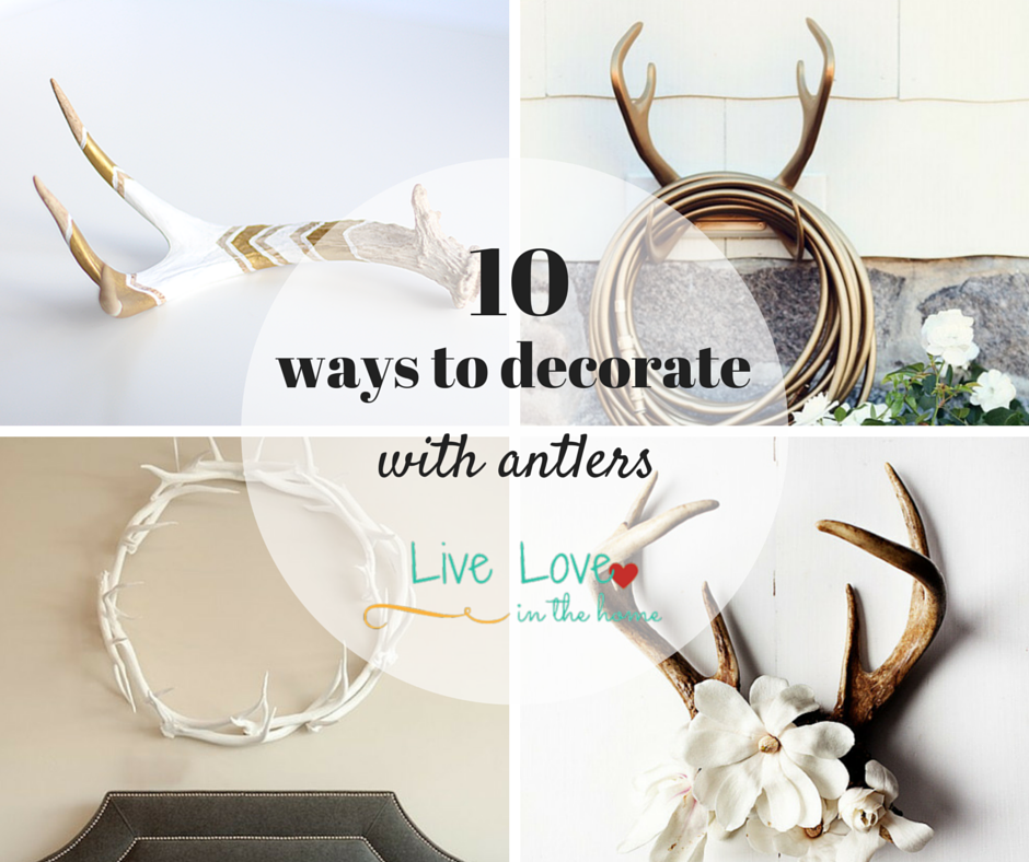 10 ways to decorate with antlers live love in the home for Antler decorations for home