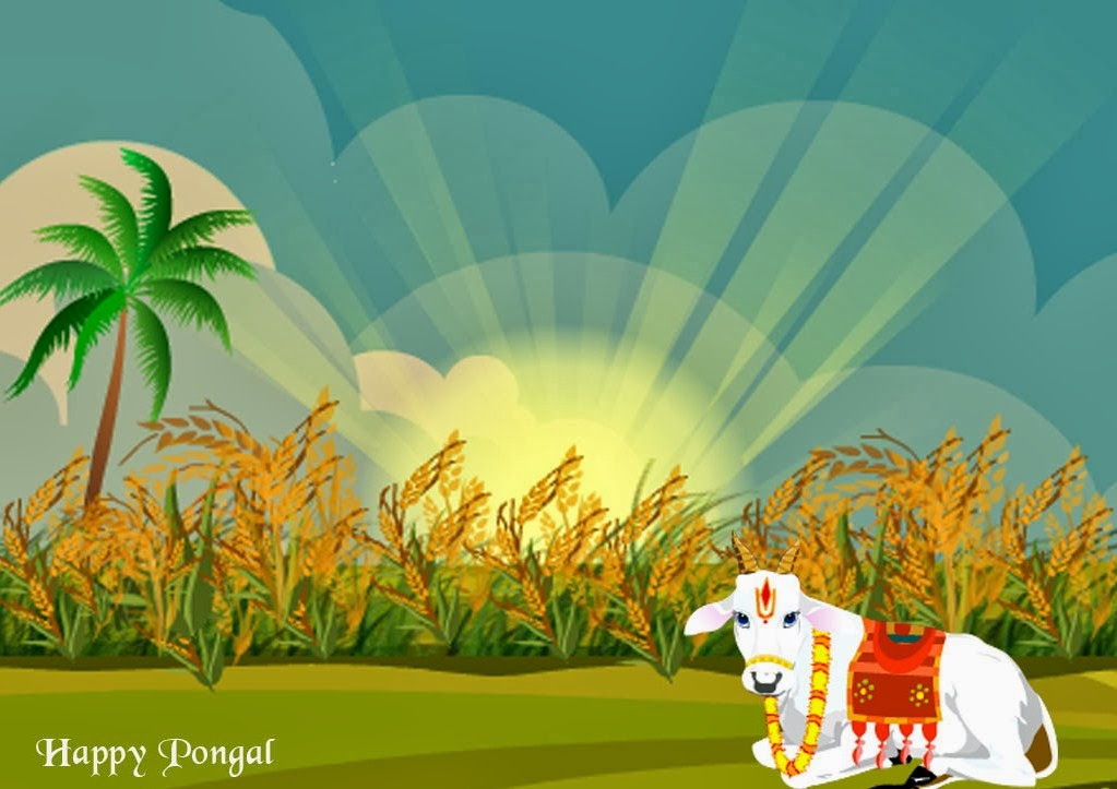 Mattu Pongal 2016 Wishes Messages Quotes Greetings