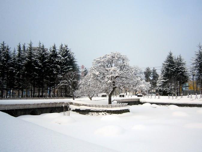 公園の冬景色