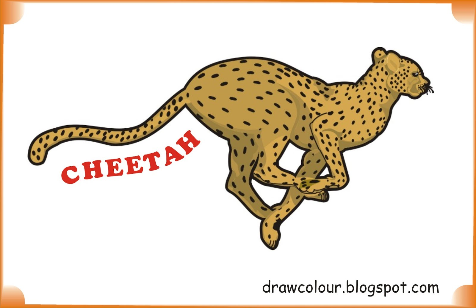 cheetah-coloring-pages