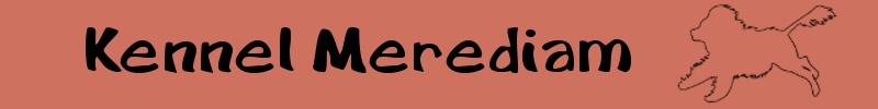 Merediam portugalinvesikoirat