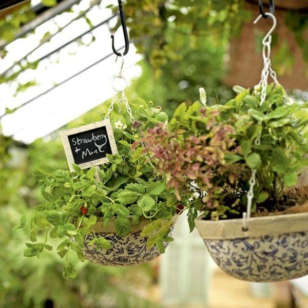 huerto en macetas colgantes- kitchen-garden