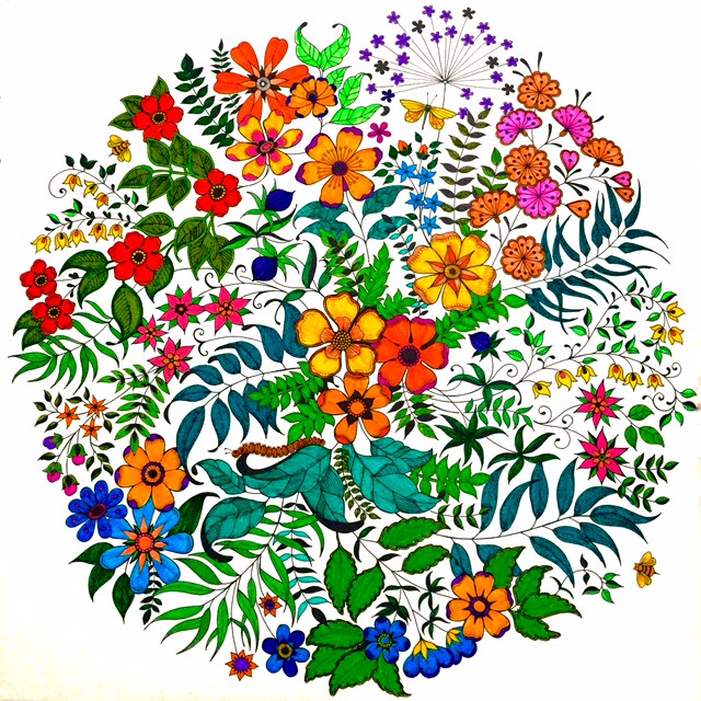 From The Secret Garden Coloring Book