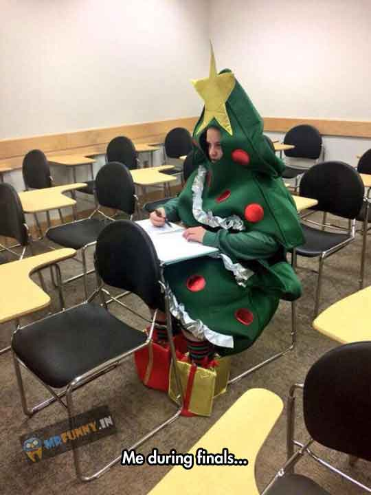 very-funny-Christmas-tree-costume
