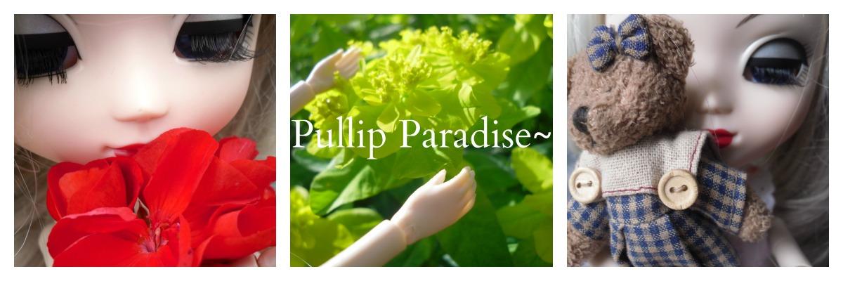 Pullip Paradise~