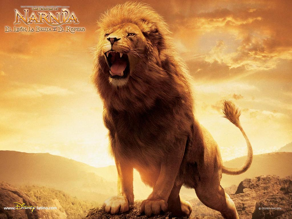 http://2.bp.blogspot.com/-g0dBnjsbJKM/TanWsOdkwII/AAAAAAAAK0k/b0UdzMYJYf0/s1600/Aslan-Lion-2-The-Chronicles-of-Narnia-Wallpaper.jpeg