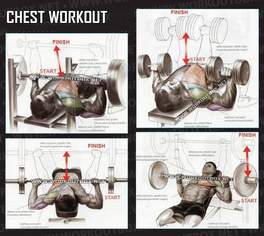 Chest workouts for mass Fitness inspiration