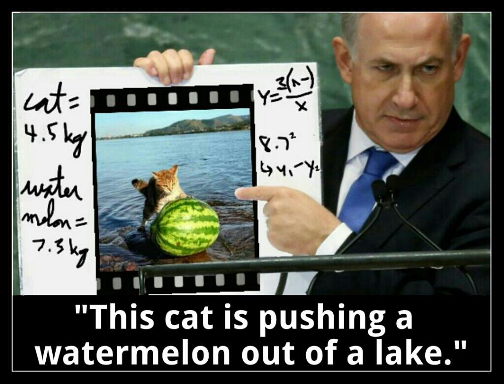 Intel meme this cat is pushing a watermelon out of a lake imgur tumblr