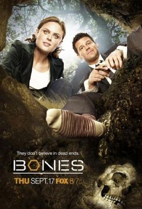 Assistir Bones 11x07 - The Promise in the Palace Online