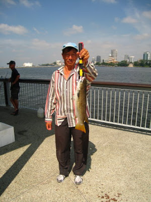Squaretail Mullet also known as Chow Orh 草乌, 鯔魚 or Belanak Caught By Ah Lee weighing 2kg plus at Woodland Jetty Fishing Hotspots was created to share with those who are interested in fishing on tips and type of fishes caught around Woodland Jetty Fishing Hotspots.